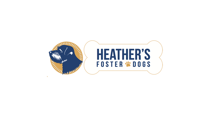 Heather's Foster Dogs